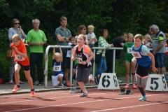 Aija-Brandt-Sprint