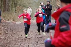 """Die Zwillinge Rebecca (Nr. 140) und Bianca Götsche vom TV Sottrum lieferten sich im Zieleinlauf ihr eigenes sportliches """"Familienduell""""."""