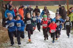 Am 14. Februar werden die Kreismeisterschaften des KLV Rotenburg nun bei einem Crosslauf in der Zevener Ahe ausgerichtet, wobei sicherlich nicht nur großen und kleinen Aktiven (hier eine Aufnahme vom Crosslauf des VfL Sittensen am letzten Sonntag in Groß Meckelsen) gespannt auf die Laufstrecken sind.