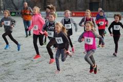 zi07: Ein Teil des Startfeldes über die 860m der weiblichen Kinder. Mit dabei Solja Brandt (Nr. 83), die spätere Kreismeisterin der W08.